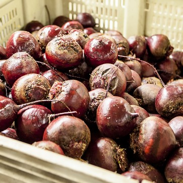 Beets - 50# bags