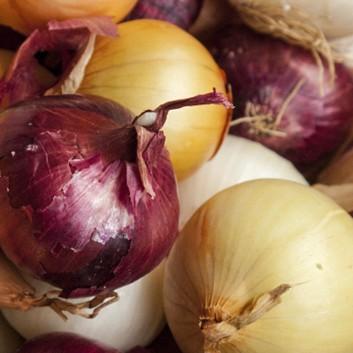 Onions - 50# bags (Jumbo Size)