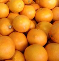 Oranges (Navels) - 40# Boxes