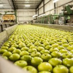 Columbia Fresh Packing received USDA certifications